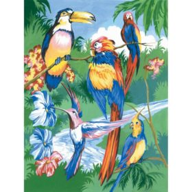 PaintByNr - tropical birds