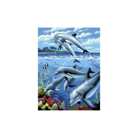 PainByNr - dolphins